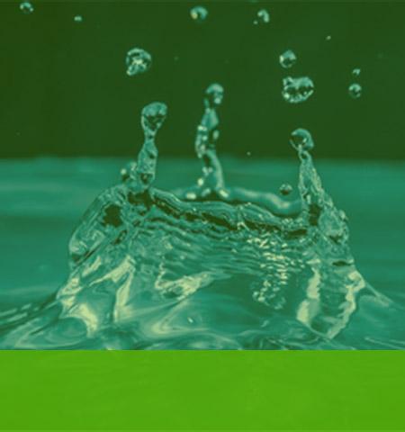 Water & Liquids